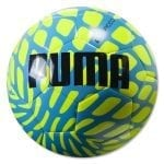 puma evospeed ball